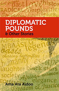 Diplomatic pounds book cover