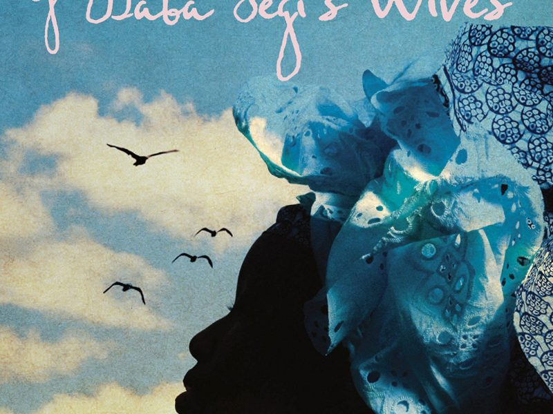 The Secret Lives of Baba Segi's Wives book cover